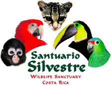 Osa Wildlife Sanctuary